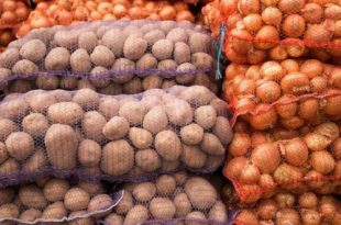 Soğan ve patates stoklamasında