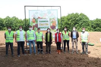 İzmit belediyesi tarım uzmanları