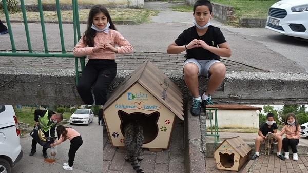 Ediş kuzenlerin sokak kedisine İzmit Belediyesinden barınak kulübesi