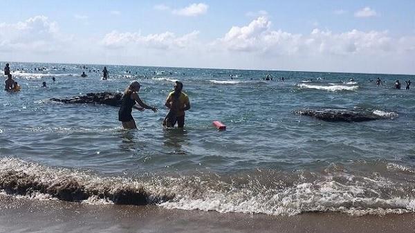 KOSKEM ekibi 188 kişiyi boğulmaktan kurtardı