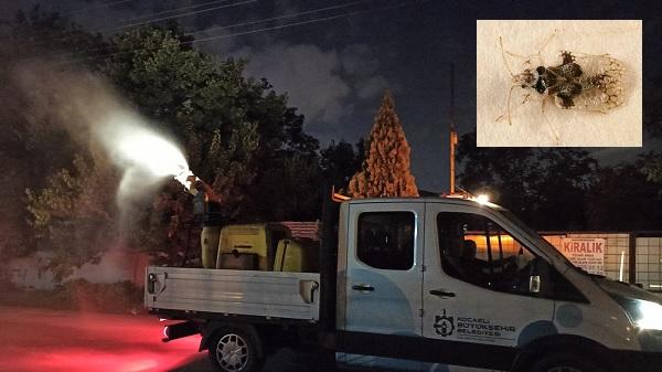 Photo of Böcek istilasına karşı Büyükşehir'den aralıksız ilaçlama