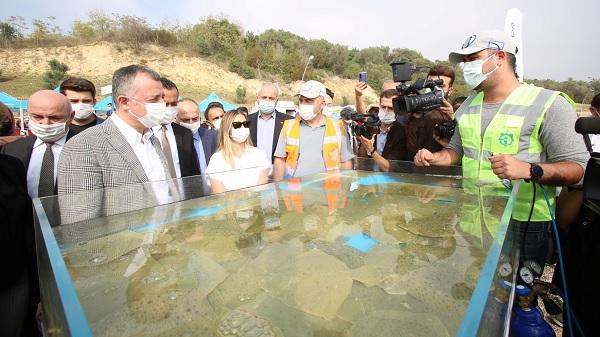 Photo of Darıca sahilinden Balıklar denize salındı