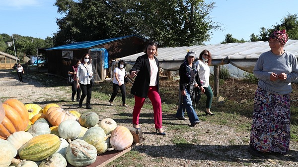 Photo of Ekoturizmi İzmit'te geliştirmek için Başkan Hürriyet harekete geçti