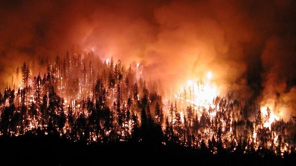 Photo of Orman Yangınlarının araştırılması AKP ve MHP Oylarıyla Reddedildi