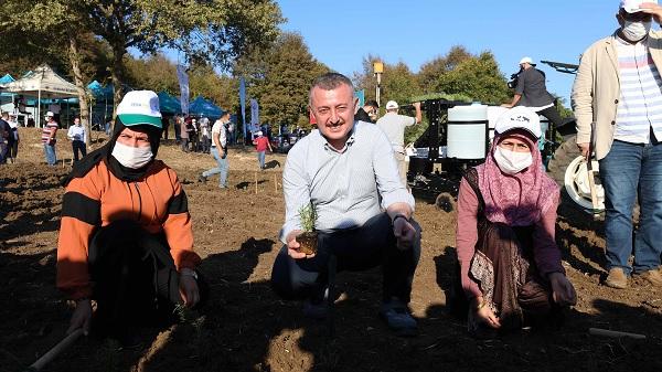 Türkiye'ye örnek projeyle 2 milyon biberiye toprakla buluştu