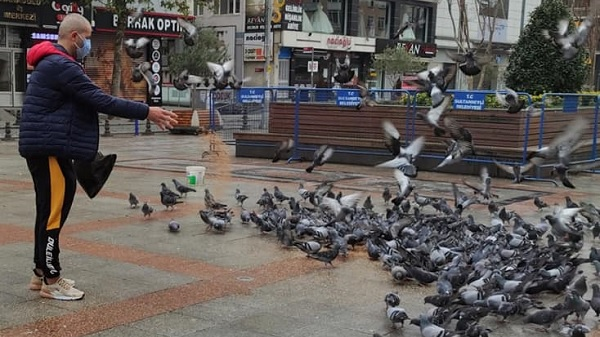 Photo of Tepeli Kostüm Güvercinleri Derneğinden 'Sen de El Ver' projesi