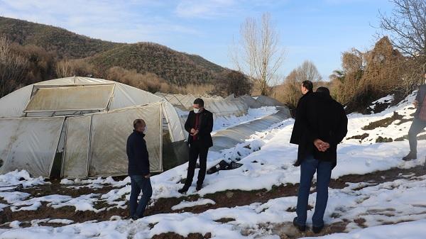 Photo of İzmit'te hasar gören seralar yerinde incelendi