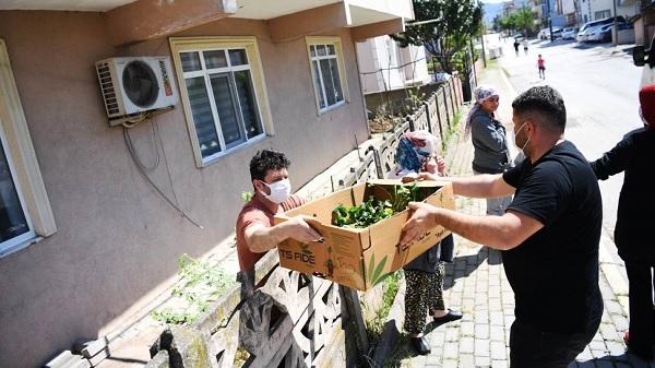 Kartepeli üreticilere 51 Bin Sebze-Meyve Fidesi dağıtıldı