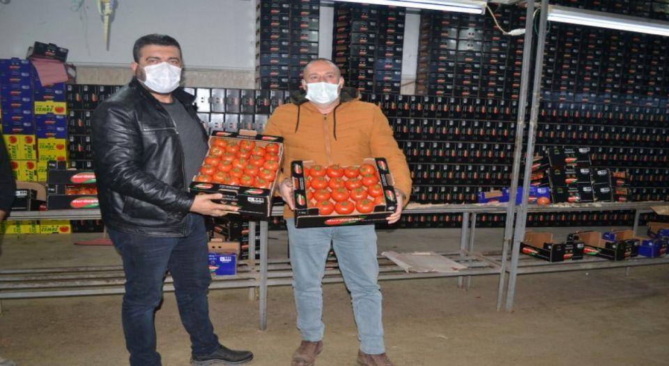 Photo of Fethiyeli üreticilerin domates sevinci