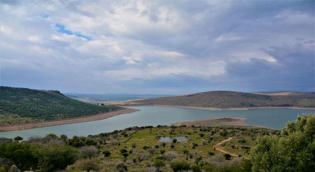 Photo of İzmir barajlarından 'Güzel' haber